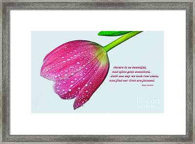 Nature Is So Beautiful... Framed Print by Kaye Menner