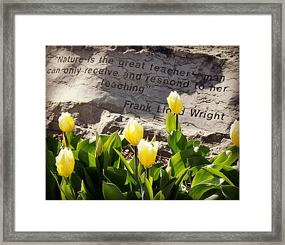 Nature Is The Great Teacher... Framed Print by Carol Toepke