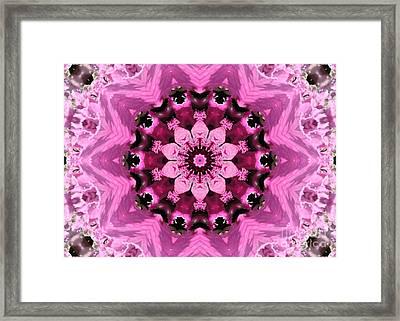 Nature Kaleidoscope 1 Framed Print