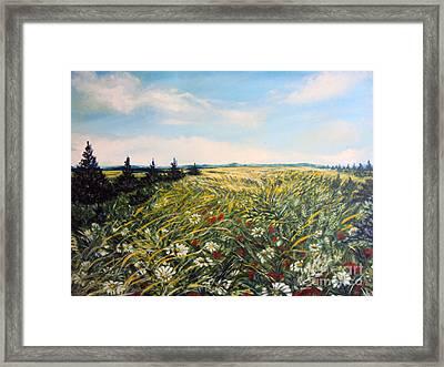 Nature Landscape Field Poppies Daises Grass Pines Original Art  Framed Print by Drinka Mercep