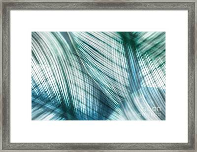 Nature Leaves Abstract In Turquoise And Jade Framed Print by Natalie Kinnear