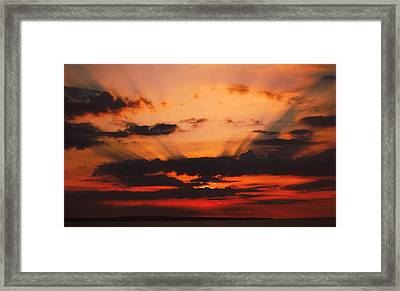 Nature Light Show Framed Print by Tony Reddington