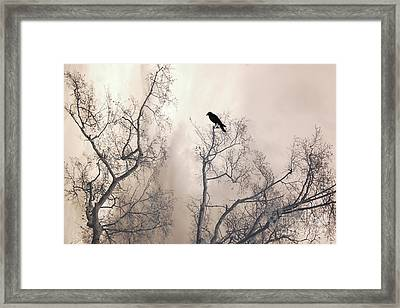 Nature Raven Crow Trees - Surreal Fantasy Gothic Nature Raven Crow In Trees Sepia Print Decor Framed Print by Kathy Fornal