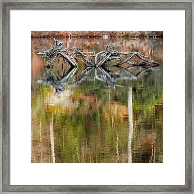 Nature Made Square Framed Print