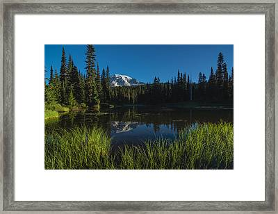 Nature Mirror Framed Print