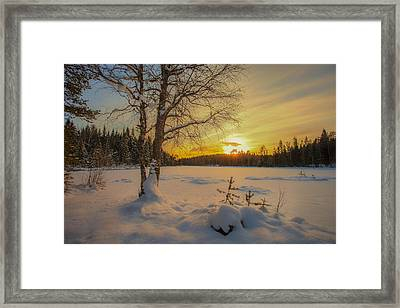 Nature Of Norway Framed Print