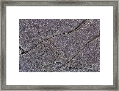 Nature Patterns Series - 68 Framed Print by Heiko Koehrer-Wagner