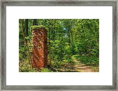 Nature Reclaims Framed Print by Tim Buisman