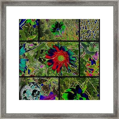 Framed Print featuring the photograph Nature Reprise by Thomasina Durkay