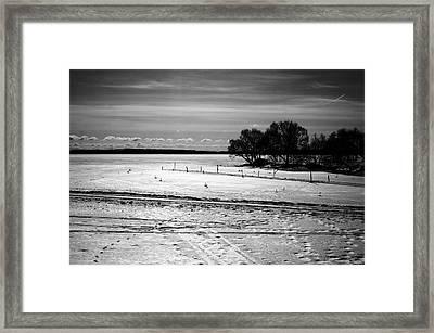 Nature Series 1.5 Framed Print by Derya  Aktas