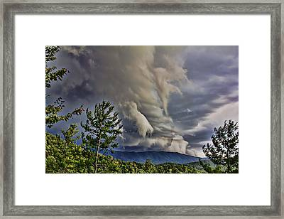 Nature Showing Off Framed Print