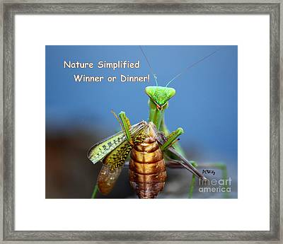 Nature Simplified Framed Print by Patrick Witz