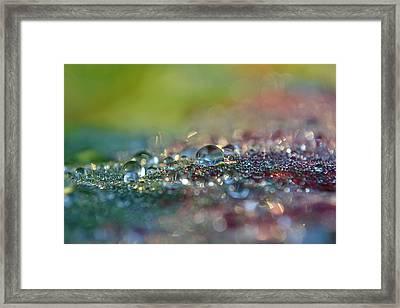 Nature Sparkles Framed Print by Melanie Moraga