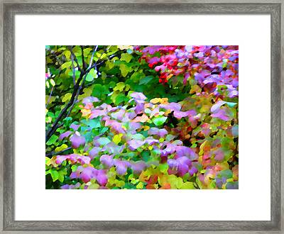 Nature Spirit Framed Print by Oleg Zavarzin