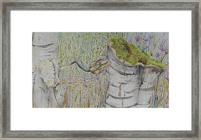 Nature Study Italy Framed Print