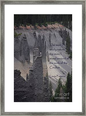 Nature Study Framed Print