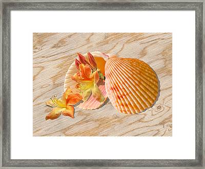 Nature's Sunshine Gems Framed Print by Gill Billington