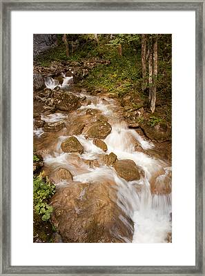 Nature Untouched Framed Print by Daniel Csoka