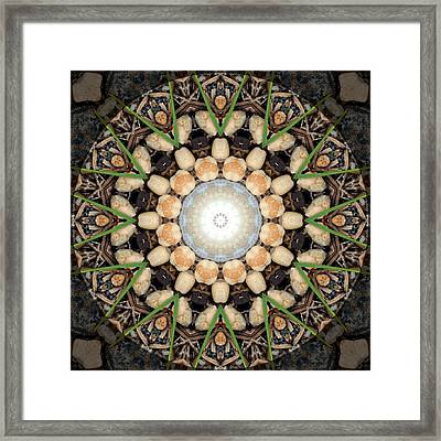 Nature Vortex Mandala #1 Framed Print by Beth Sawickie