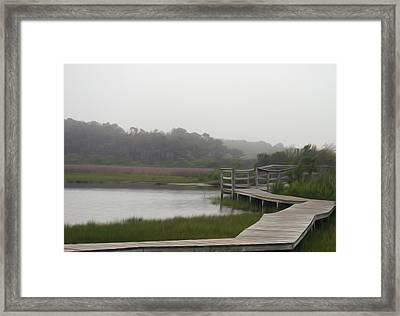 Framed Print featuring the photograph Nature Walk by Kelvin Booker