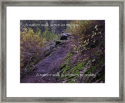 Nature Walk Framed Print by Tom Trimbath