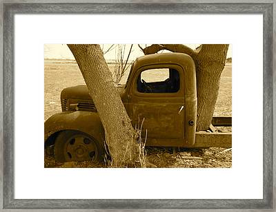 Nature Wins Framed Print by Artist Orange