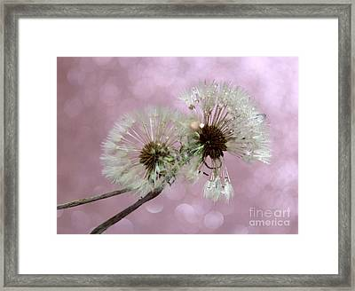 Nature Wish Framed Print by Krissy Katsimbras