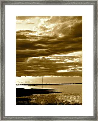 Nature Witnesses Framed Print by Q's House of Art ArtandFinePhotography