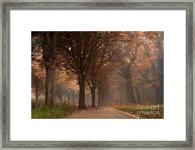 Nature Woodlands Autumn Fall Landscape Trees Framed Print by Kathy Fornal