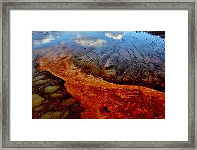 Framed Print featuring the photograph Natureprint by Benjamin Yeager