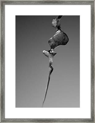 Natures Act Of Art Framed Print by Peder Lundkvist