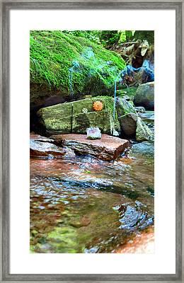 Natures Altar Framed Print