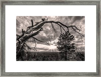 Natures Arch Framed Print
