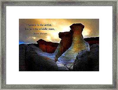Nature's Art Framed Print by Mike Flynn