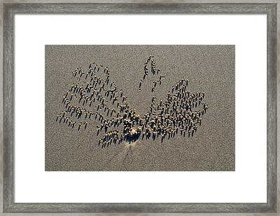 Natures Art - Two Sand Leaves Framed Print