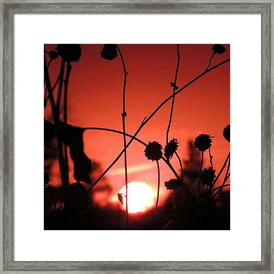 Nature's Beauty Is Good For The Soul Framed Print