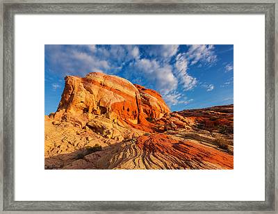 Nature's Blend Framed Print by James Marvin Phelps