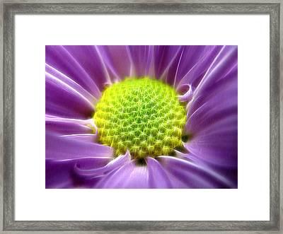 Nature's Bling Framed Print