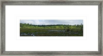 Framed Print featuring the photograph Nature's Bog Lan 431 by G L Sarti