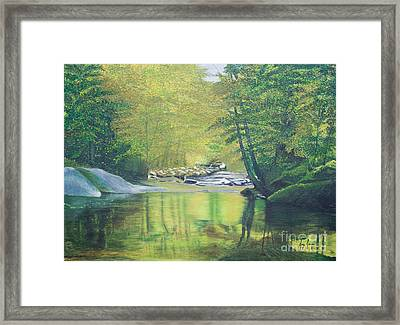 Nature's Charm Framed Print by Joy Ballack