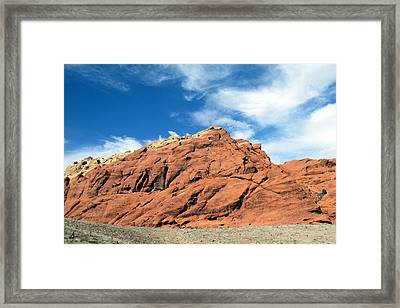 Nature's Colors Framed Print by Andrea Dale