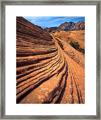 Nature's Concentric Circles Framed Print by Ray Mathis