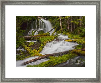 Natures Course Through Moss Framed Print by Mike Reid