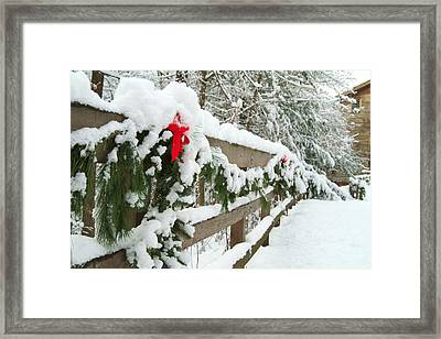 Nature's Decorations Framed Print