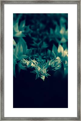 Nature's Directions - Green Framed Print