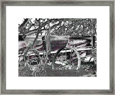 Nature's Embrace Framed Print