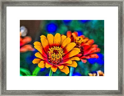 Natures Eye Candy Framed Print by Rebecca Adams