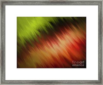 Nature's Feathers Framed Print
