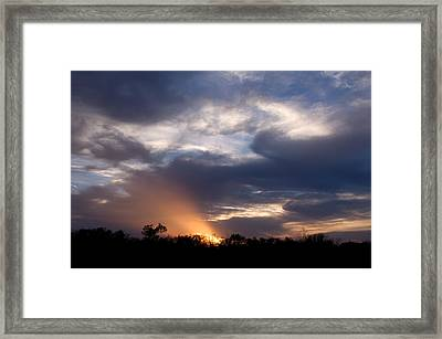 Nature's Flashlight Framed Print by Kelly Kitchens