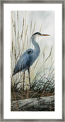 Natures Gentle Stillness Framed Print by James Williamson